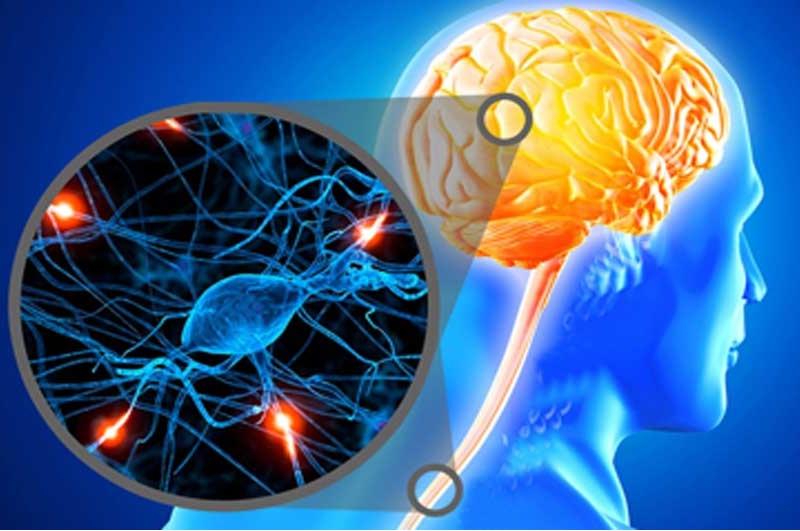 سکته مغزی از پیشگیری تا مراقبت از بیماران در منزل