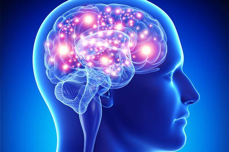 متخصص مغز و اعصاب و نورولوژیست کیست