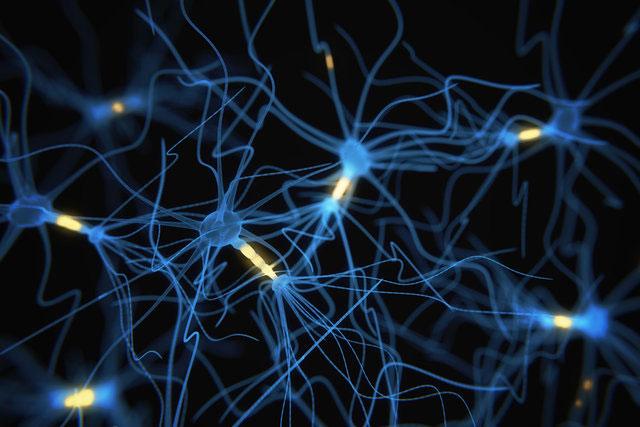 نورونها در نوار مغزی