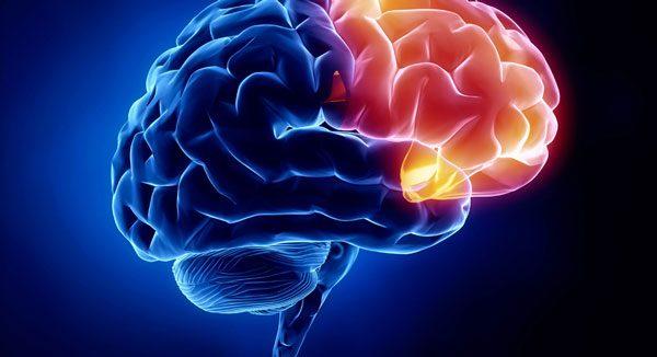 نوار مغز (EEG) چیست و چگونه انجام می شود